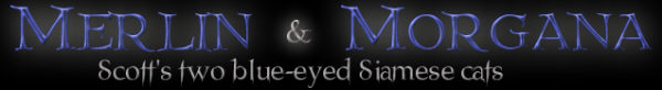 Merlin and Morgana logo